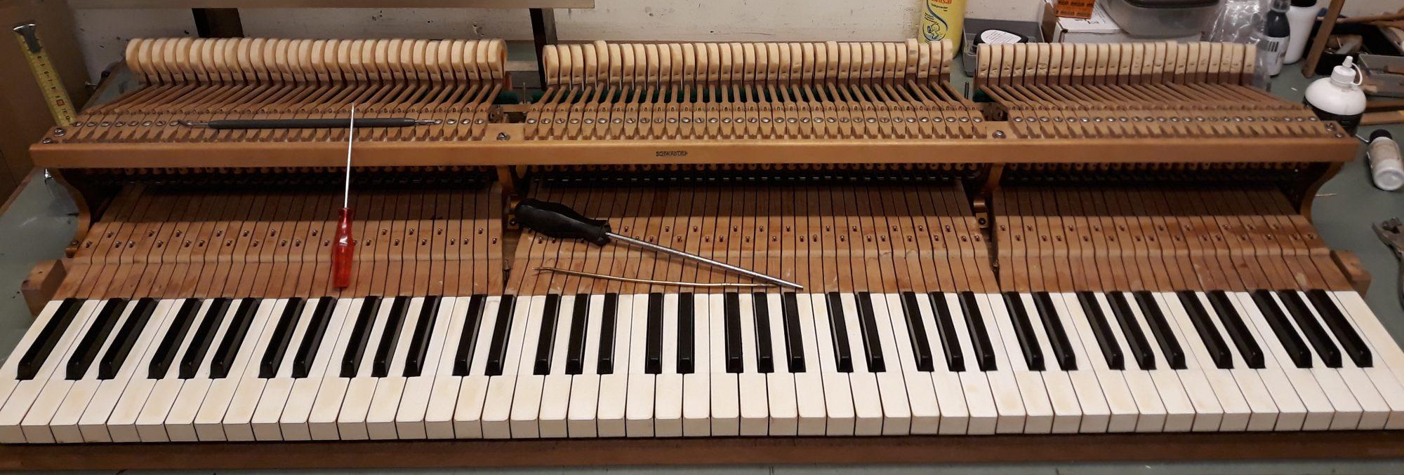 Pianissimo / Coenraad van Baalen